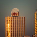 CN Tower Hat thumbnail