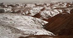 Snow on Mudstone (arbyreed) Tags: arbyreed landscape redrock goblins hoodoos snow winter cold fallingsnow goblinvalley emerycountyutah wildhorsebutte