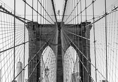 Toile de fer (Papayankee33) Tags: architectureetbatiments batiments brooklynbridge gratteciel newyorkcity nikon24120mmf4gvr nikond750 pont