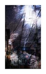 Série du 03 06 18 : Tokyo, dernier jour (basse def) Tags: tokyo japan electricity