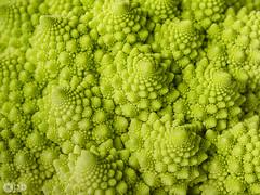 Surface de la planète Romanesco. (Philippe Bélaz) Tags: abstrait choux couleurs détails légumes motifs pattern romanesco structures vert