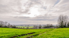 Nettlehill Circular Walk 6th January 2019 (boddle (Steve Hart)) Tags: nettlehill circular walk 6th january 2019 steve hart boddle steven bruce wyke road wyken coventry united kingdon england great britain canon 5d mk4 6d 100400mm is usm ii 2470mm standard dji fc2103 mavic air wild wilds wildlife life nature natural bird birds flowers flower fungii fungus insect insects spiders butterfly moth butterflies moths creepy crawley winter spring summer autumn seasons sunset weather sun sky cloud clouds panoramic landscape 360 arial rugby unitedkingdom gb