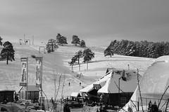Too early for skiing... (superhic) Tags: winter snow blackwhite skiing zima sneg zlatibor srbija serbia
