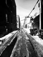 Plateau Alleyway (Montreal) (MassiveKontent) Tags: noiretblanc blackwhite montreal bw city monochrome urban blackandwhite streetphoto montréal quebec canada streetphotography bwphotography streetshot shadows blancoynegro metropolis cityscape road building plateau absoluteblackandwhite mono architecture snow cold frozen narrow alley thaw