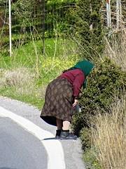Looking for χόρτα. (Ia Löfquist) Tags: crete kreta hike hiking vandra vandring walk walking wanderen winter vinter woman kvinna horta χόρτα