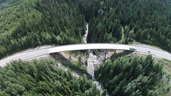 Joint funding in place for Quartz Creek Bridge project (BC Gov Photos) Tags: bcgovernment britishcolumbia bc fourlaning quartzcreekbridge highway1 transcanadahighway funding safety efficiency capacity