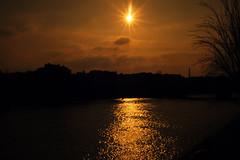 the gold of the Seine Paris-reflets d'or sur la seine (laurent.triboulois) Tags: sun water river clouds color city downtown ville paris or