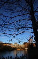 2019-01-06 (Giåm) Tags: københavn köpenhamn copenhagen copenhague kopenhagen indreby botaniskhave jardinbotanique botanicalgarden palmehuset hovedstaden sjælland själland zealand danmark denmark danemark dänemark giåm guillaumebavière