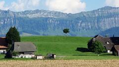 DSC05656 (ursrüegsegger) Tags: linden juli august getreideernte bauernhöfe landschaft regenbogen