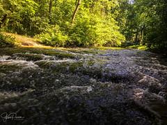 The Summer Rush (spierson82) Tags: iphone summer landscape geocaching fractionrun water dellwoodpark creek lockport illinois unitedstates us