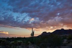 DSC00604 (wNG555) Tags: 2014 arizona phoenix apachejunction apachetrail superstitionmountain sunset a6000 ilce6000