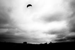 "Wind takes me away 讓風帶我走~ <a style=""margin-left:10px; font-size:0.8em;"" href=""http://www.flickr.com/photos/95312907@N06/46993461782/"" target=""_blank"">@flickr</a>"
