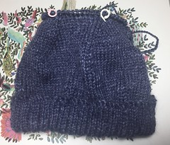 Hat for Michael (Adriene Hughes) Tags: adrienehughes softservegirl photography snapshots knittinghats knitting bluehat