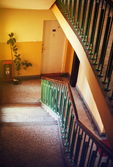 Retro Building Hall (dejankrsmanovic) Tags: hall architecture interior stairs building design stair staircase light floor inside stairway indoor urban entrance house city wall empty step room corridor style window structure indoors nobody abstract contemporary hallway way door metal steps construction home steel ceiling old apartment elegant wooden walkway concept passage marble living lifestyle residential vintage