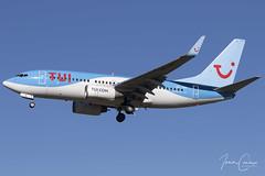 Boeing 737-7K5 – TUI Fly Belgium – OO-JAO – Brussels Airport (BRU EBBR) – 2019 02 15 – Landing RWY 25L – 02 – Copyright © 2019 Ivan Coninx (Ivan Coninx Photography) Tags: ivanconinx ivanconinxphotography photography aviationphotography boeing boeing737 boeing737700 boeing7377k5 737 b737 737700 7377k5 jetairfly tui tuiflybelgium oojao playingtowin brusselsairport bru ebbr