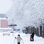 Uppsala, January 26, 2019 thumbnail
