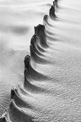 brise-lames.jpg (arnaudthx) Tags: mer sable vent noiretblanc blackandwhite graphisme abstrait abstract briselames