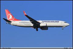 BOEING737 8F2 TURKISH AIRLINES TC-JVH 60012 Frankfurt janvier 2019 (paulschaller67) Tags: boeing737 8f2 turkish airlines tcjvh 60012 frankfurt janvier 2019
