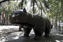 Gato (OmaWetterwachs) Tags: barcelona spain catalan katalonien travel gato cat sculpture gat fernando botero