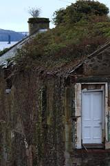 The Old Post Office on Boat Road, Newport on Tay (milnefaefife) Tags: image28100 100xthe2019edition 100x2019 firthoftay coast fife scotland tay newportontay sea bridge railway ruin rubble door ivy derelict roof chimney overgrown