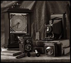 img701 (kodak dinosaur) Tags: homemadecamera ilex170mm 4x5 bw monochrome large format expired film trix kodak