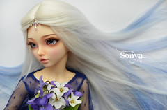 DSC_2166 (sonya_wig) Tags: fairytreewigs wig bjdwig minifeewig bjd bjdminifee minifeechloe handmadedoll bjddoll dollphoto fairyland fairylandminifee minifee chloe bjdphotographycoloringhair