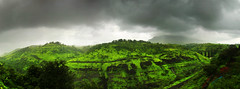 Igatpuri valley (Debmalya Mukherjee) Tags: panaroma debmalyamukherjee canon550d 18135 stitch maharastra westernghats sahayadri valley hills green lushgreen igatpuri