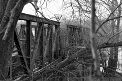 Kanonenbahnbrücke (chipdetty) Tags: brücke über die alte elbe kanonenbahnbrücke railwaybridge bridge monochrom magdeburg landscape urbanphotography oldelbe black white bw bnw eisenbahnbrücke 5