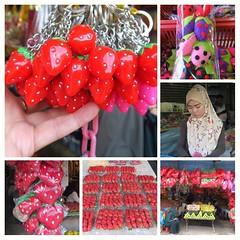 TANAH RATA, la ville spécialisée dans la culture des fraises (LILI 296...) Tags: tanahrata malaisie fraises culture collage