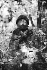 jizou 05 (mathias-erhart) Tags: japan 日本 japanese figure statue stone jizou 地蔵 plant plants bokeh blackwhite monochrome