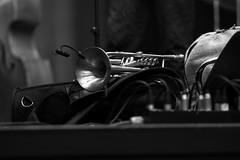 A trumpet at rest (Manuel Chagas) Tags: music concert trumpet trompete musica concerto manuelchagas olympus zuiko mzuiko olympus75mmf18 olympus75mm 75mm f18 mzuiko75mmf18 mft m43 microfourthirds mirrorless bokeh background stage palco blackwhite bw black white mic microphone jazz