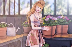 ♚ Look #673 ♚ (Caity Saint) Tags: decoy collabor88 event secretposes spring flowers secondlife monso redhead catwa bento maitreya pose pixels avatar