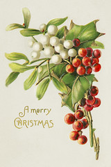 Vintage Christmas card design (Free Public Domain Illustrations by rawpixel) Tags: aom pdproject20 pdproject20batch44 pdproject22 por vector pdproject20batch44x antique art arts artwork berries berry branch card celebration christmas decor decoration drawing festive fruit happy historic historical history holiday holly illustration leaf leaves letter lettering merry merrychristmas mistletoe name natural nature ornament ornamental painting plant postcard print publicdomain retro season seasonal sprig tradition traditional twig typographic vintage xmas