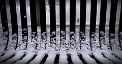 Stranger (PumpkinSpiceLette) Tags: bench stranger figure shadow bars park alone walk cold snow ice
