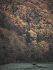 嵐山|京都 (里卡豆) Tags: 京都市 京都府 日本 jp olympus 40150mm f28 pro olympus40150mmf28pro penf olympuspenf