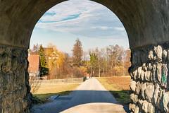 Under the Bridge (Bephep2010) Tags: 2019 7markiii bridge brücke bäume ilce7m3 sel24105g samstagern schweiz sony switzerland weg winter zurich zürich path trees ⍺7iii kantonzürich ch