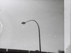 Lo-fi (Matthew Paul Argall) Tags: hanimex108f fixedfocus 110 110film subminiaturefilm lomographyfilm 100isofilm blackandwhite blackandwhitefilm