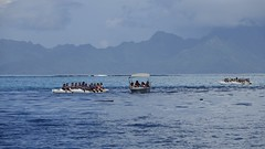 Polynésie 2019 - Tahiti (Valerie Hukalo) Tags: punaauia taapuna va'a pirogue polynésiefrançaise frenchpolynesia france tahiti archipel archipeldelasociété hukalo valériehukalo island île océanie polynésie polynesiaocéan océanpacifique pacificocean oceania