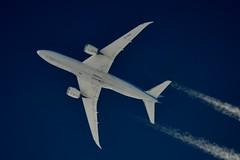 TUI Airways Boeing 787 G-TUIA (stephenjones6) Tags: civil aviation blue sky contrail chemtrail vapour boeing b787 b7878 tui msn34422 airways dreamliner ott highaltitude nikon d3200 skywatcher dobsonian telescope extremespotting vapourtrail jet aircraft plane