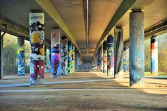 "🌁💈 ""Palisade Paradise"" - Niddapark, Frankfurt - [GERMANY] (Vagabundler) Tags: streetart mainhattan frankfurt niddapark graffiti graffitiart ffm streetartfrankfurt urbanexploration art🎨 frankfurtdubistsowunderbar urbanart dailygraffiti storyofthestreet streetartiseverywhere vagabundler rabbit spraycanart thankgoditsfrankfurt streetartistry murales frankfurtammain wallart streetartglobe streetlandgraffiti graffitiofourworld urbanwalls graffitiwall globalstreetart grafflife"