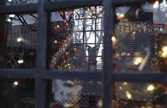 Developing Color Film for the First Time - Ogden Christmas Village - Ogden, Utah (Shaun Nelson) Tags: 35mm agfavista200 c41 canon10s christmas christmasvillage cinestillc41kit colorfilm film ogden ogdenchristmasvillage ut utah cinestill canon filmisnotdead filmphotography analog ishootfilm believeinfilm filmcommunity staybrokeshootfilm filmcamera analogphotography filmfeed analogue thefilmcommunity buyfilmnotmegapixels 35mmfilm shootfilm agfavista keepfilmalive filmphoto