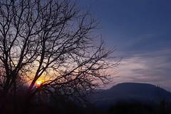 early in the morning east-view (Fay2603) Tags: morning morgen sunrise sonnenaufgang sonne sonnenlicht berg hill tree baum äste astwerk himmel sky cielo ciel wolken clouds