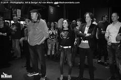 2019 Bosuil-Het publiek bij Steady State en The Animals 14-ZW