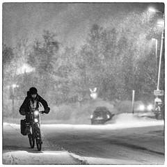 Arctic Commuters (Asbjørn Anders1) Tags: vind wind snow wintercycling tromsø tromso norway bicycle bw blackandwhite road tree bike sky people