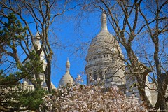 Spring blooms at Sacre Coeur Basilica... (Mona Zimba) Tags: basilica sacrécoeur paris spring bloom france montmartre mound