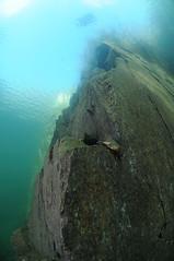 NorthWales-VivianQuarry-201802-23 (Tony J Gilbert) Tags: snowdonia llanberis northwales viviandivecentre vivianquarry mountsnowdon diving aquatic freshwater quarry floodedquarry nikon d300