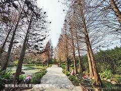 菁芳園 彰化田尾 景觀餐廳 48 (slan0218) Tags: 菁芳園 彰化田尾 景觀餐廳 48