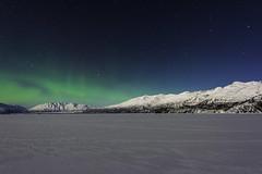 Northern Lights in Alaska (Yu Takada) Tags: alaska northernlights auroraborealis mountain winter snow lake