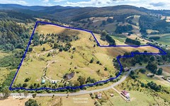 262 Fourfoot Road, Geeveston TAS