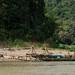 River Fishing Boats